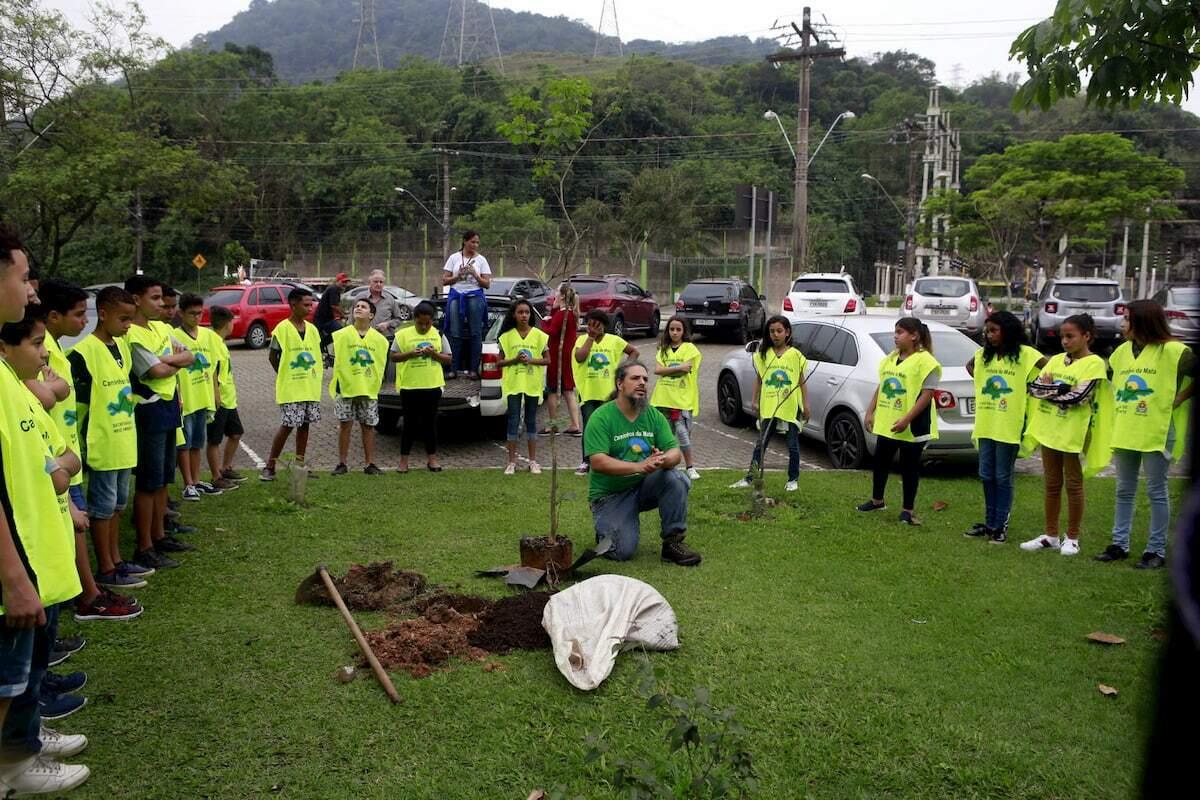 Em quatro anos, a Secretaria de Meio Ambiente plantou cerca de 3.000 árvores
