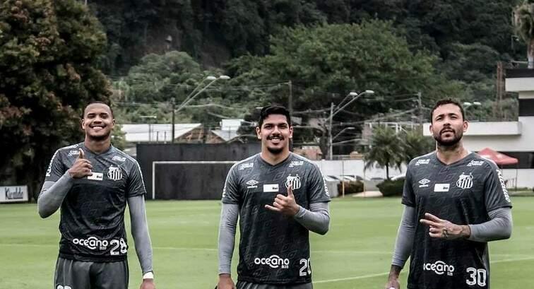 Quem você escolheria para defender o Peixe na final da Libertadores