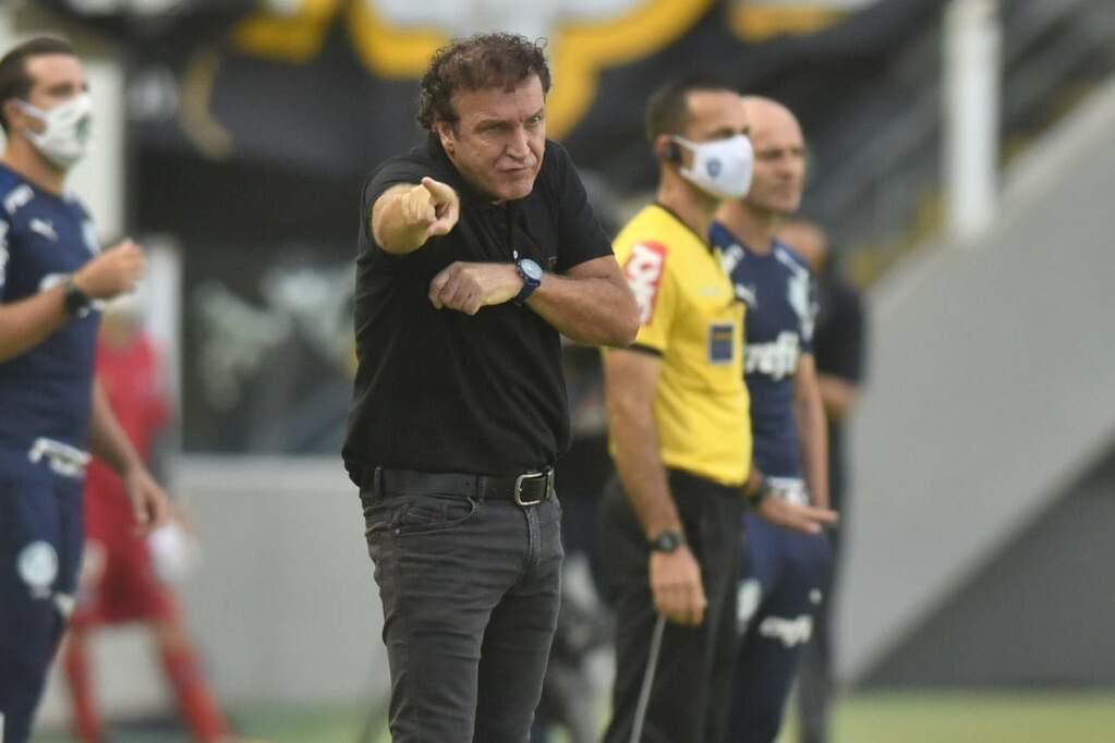 Na Vila Belmiro, Cuca obteve 12 vitórias, oito empates e quatro derrotas nesta passagem