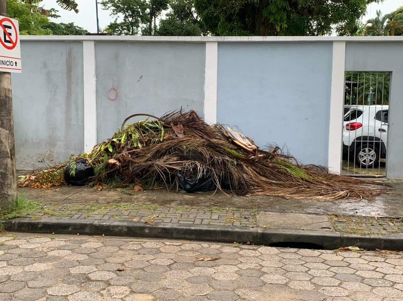 Descarte incorreto de entulhos e podas nas calçadas acarreta multa de R$ 500,00